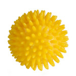 photo of spikey ball