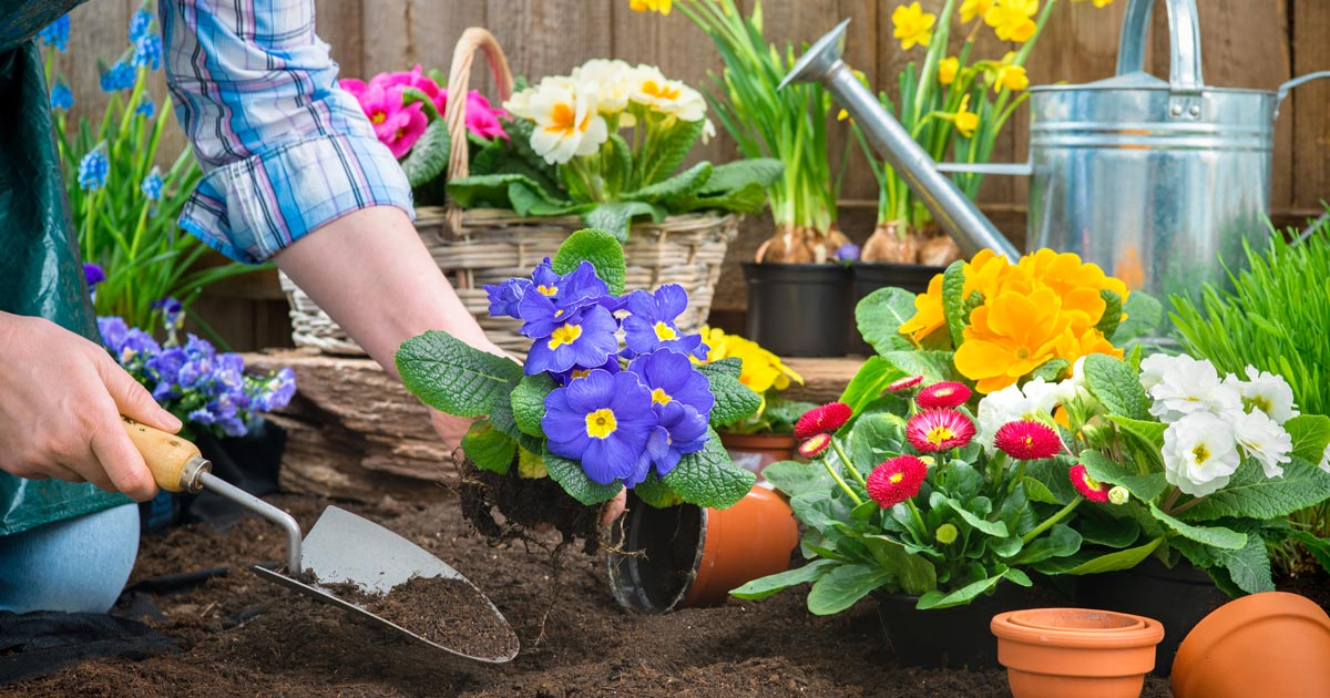 Gardening tips to prevent pain